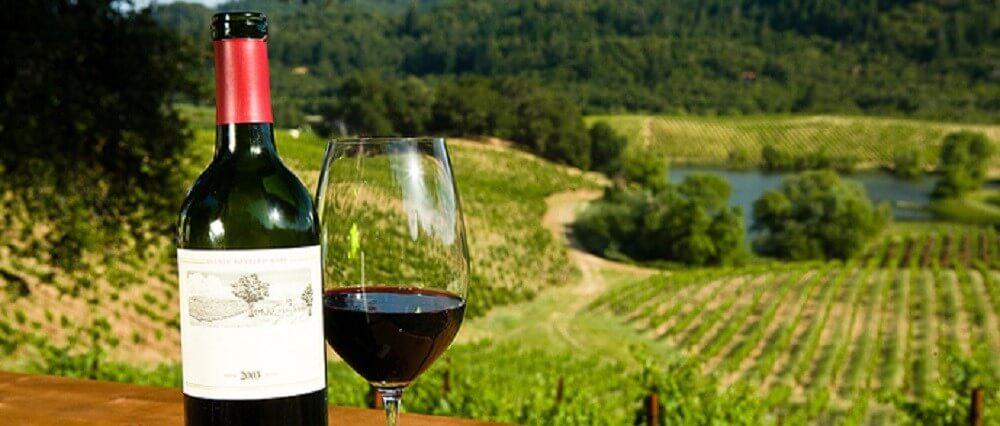 Popular Wine Varieties of the Hunter Valley
