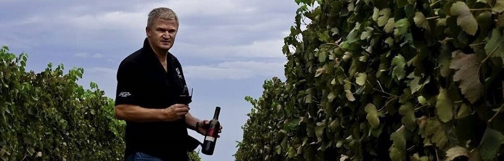 Getting to Know Drayton's Family Wines