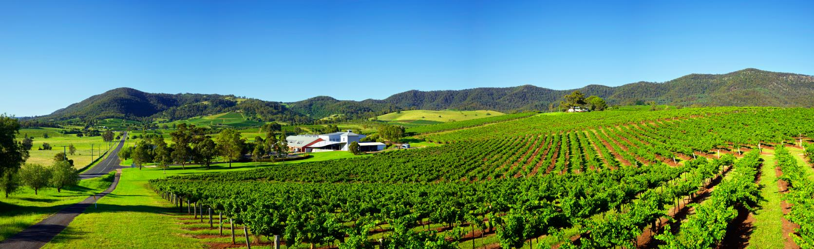 How many wineries are in Hunter Valley?