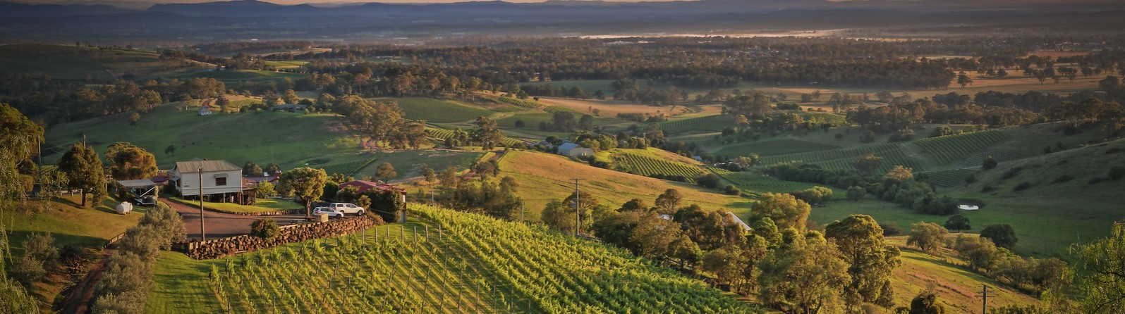How to enjoy Hunter Valley in the summertime