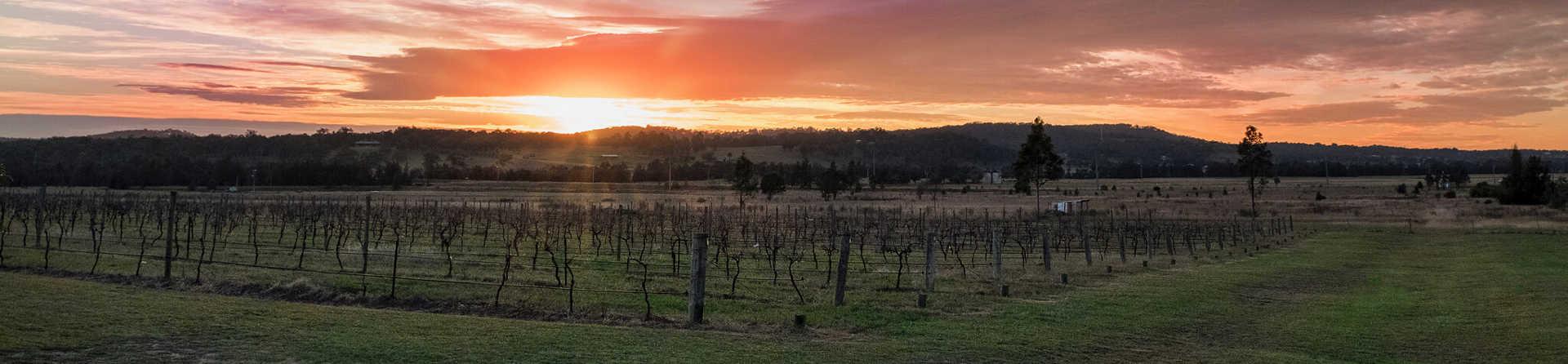Is wine tasting free in Hunter Valley?