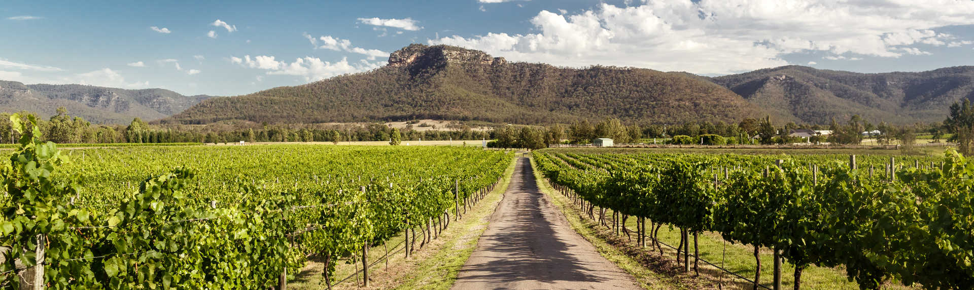 What can you do in the Hunter Valley if you don't drink?